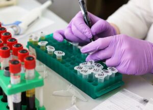 Laboratory, sample collection and analyses