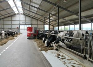 Harmful effects of feed restriction on milk fat synthesis