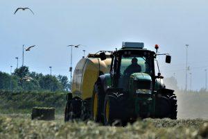 Cosechando forraje de alfalfa de alta calidad